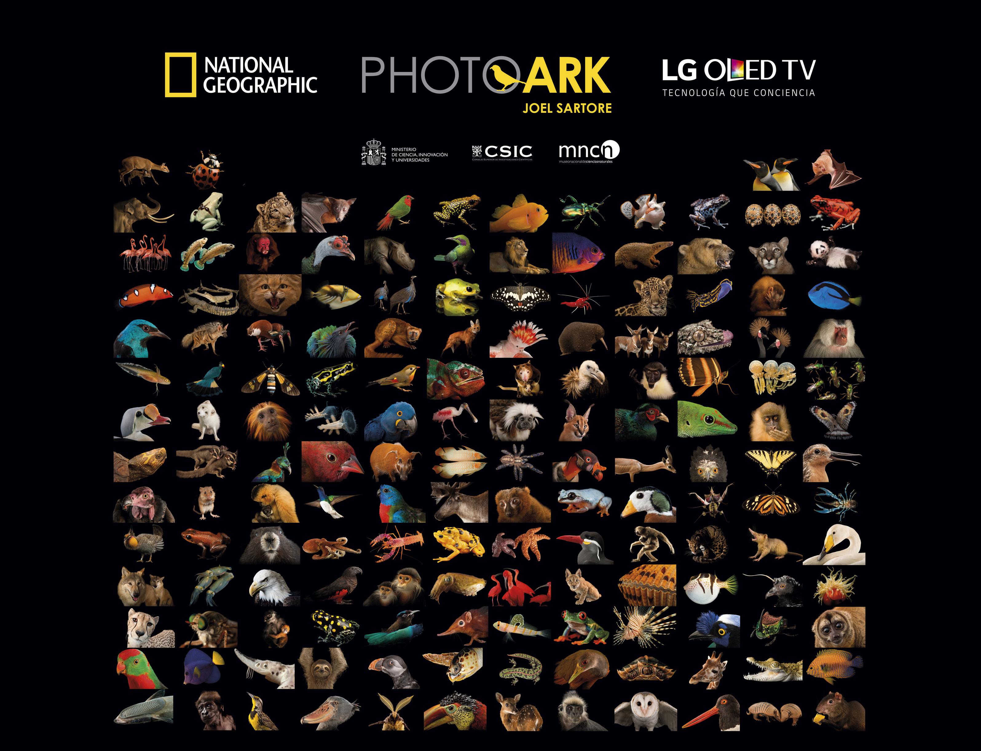 LG Electronics, PhotoArk_National Geographic